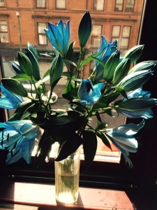 blue lillies and cities - Version 2