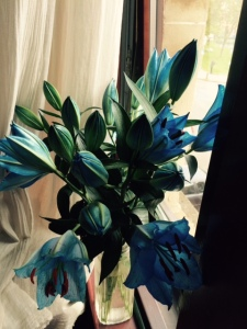 blue lillies